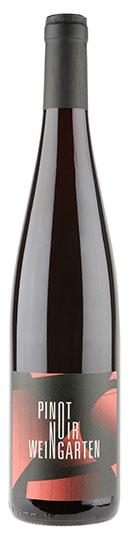 Vin nature Natural Wine Bio Organic Pinot Noir Weingarten Kumpf et Meyer
